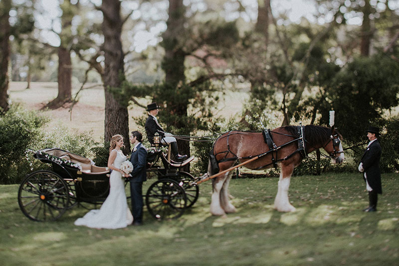 Bride and Groom stand in front of a horse and carriage.