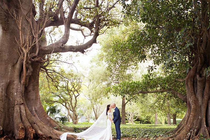 Bride and Groom kissing while surrounded by huge trees.