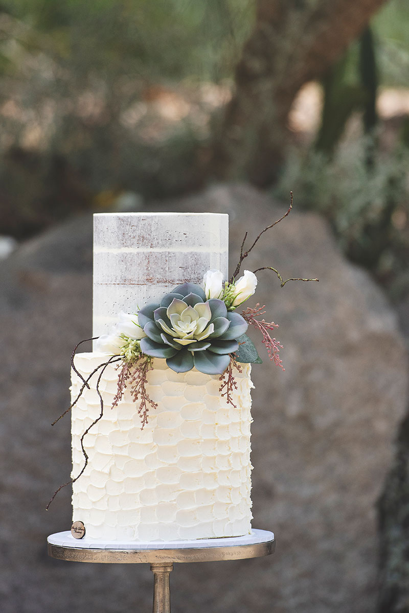Rustic buttercream wedding cake with succulents.